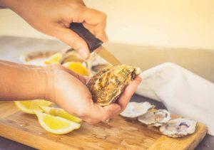 Oyster Shucking Knife