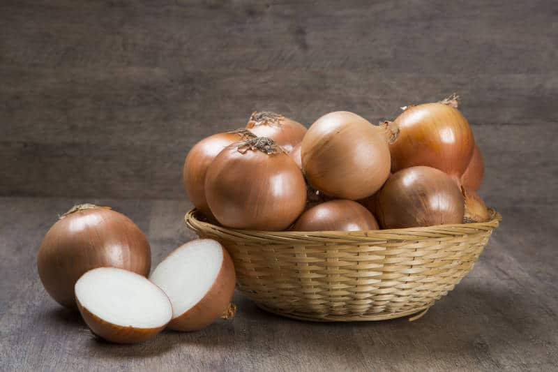 Farm fresh onions on a rustic wooden table with spring onions